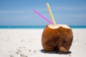 Usos del coco